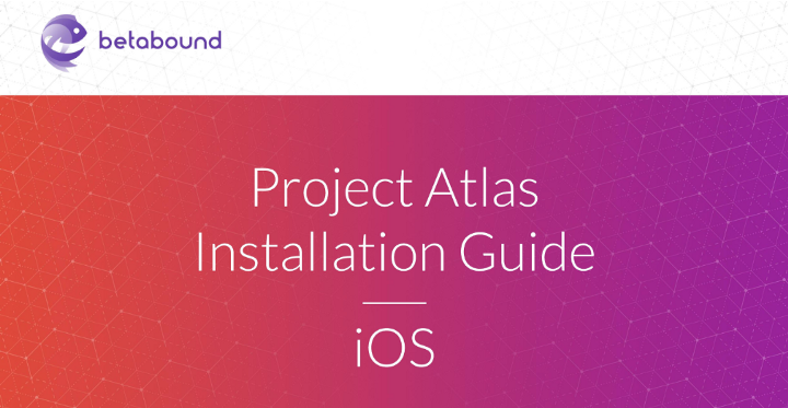 betabound Project Atlas